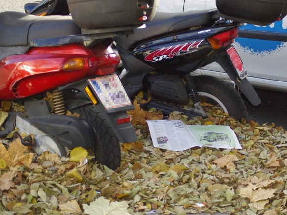 Mopeds im Laub