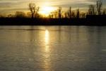 Alte Donau 06
