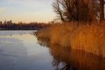 Alte Donau 07