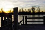 Alte Donau 08