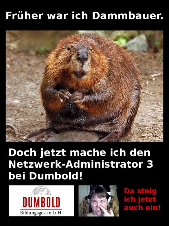 Dammbauer - Netzwerkadministrator