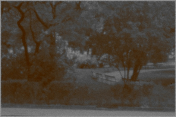 Lochkamera Park sepia