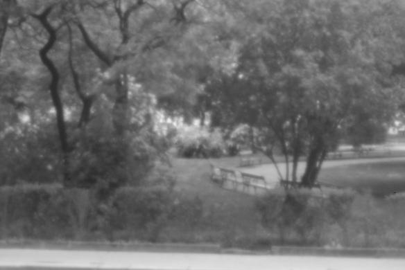 Lochkamera Park swws