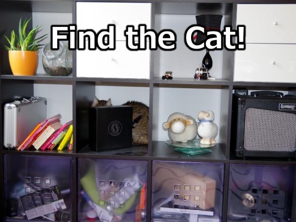finde die Katze