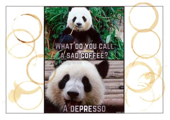 Kaffeeflecken-KW25-2016