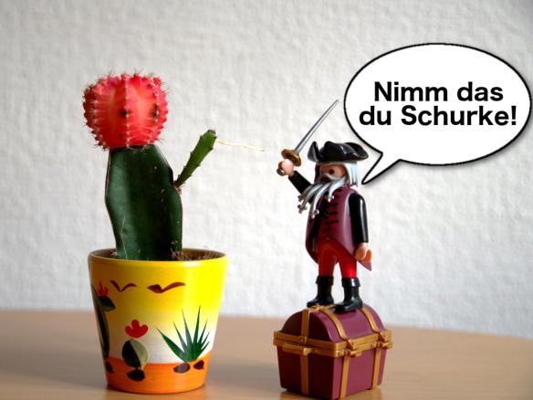 Pirat gegen Kaktus