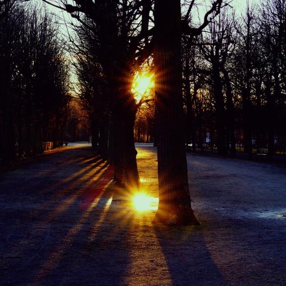 Schlossgarten zur goldenen Stunde