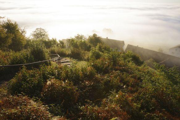 Herbst-St.Anna